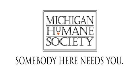 michigan humane society offers reward  find  set dog