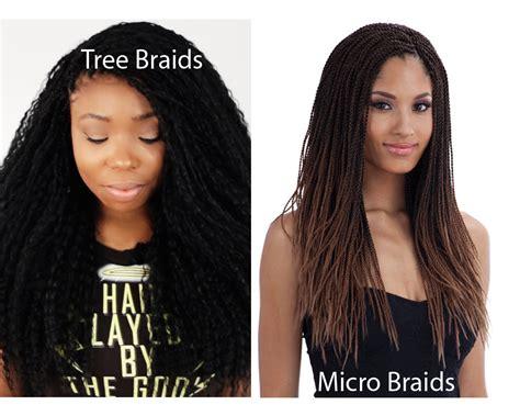 tree braids vs micro braids tree braids vs micro braids ilookwar com