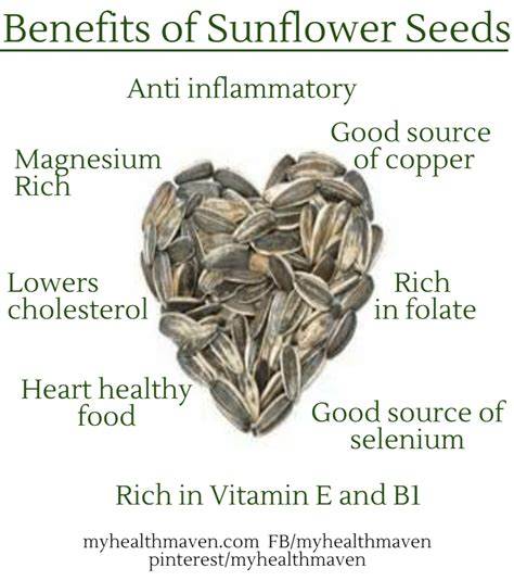 benefits of black sunflower seeds for horses learn the health benefits of cherries my health maven