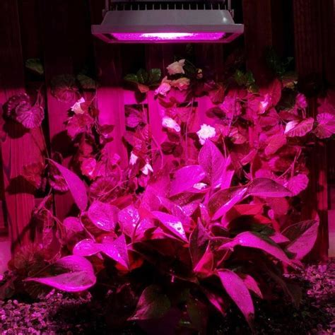 chinese led grow lights online buy wholesale led grow lights china from china led