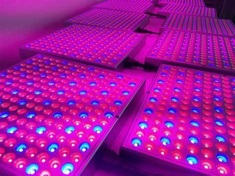 greenhouse led grow lights greenhouse lighting systems uk lighting ideas
