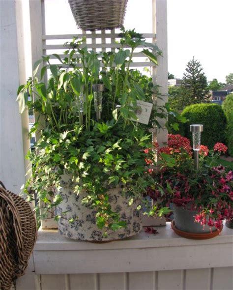 Mesin Alkon terrasse balkon mein kleiner balkon mein domizil