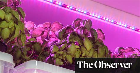 brilliant indoor benefits  led grow lights life