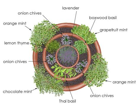 herb garden layout ideas container gardening ideas for limited space homescorner