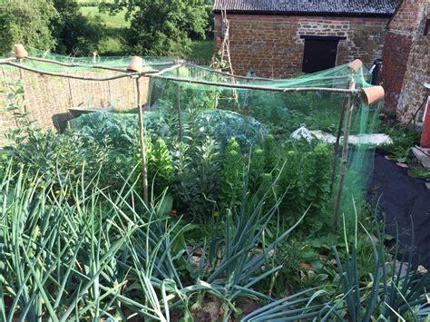 Garden Saga by Protective Garden Netting Saga