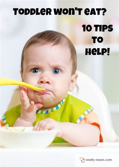 wont eat tips for when your toddler won t eat healthy today
