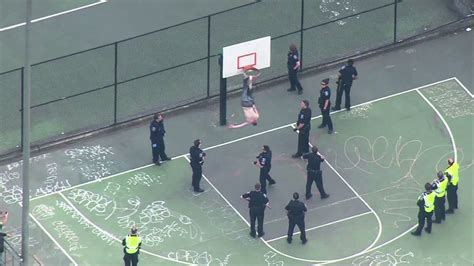 rescue seattle say what now gets stuck in a basketball hoop has to be rescued by the