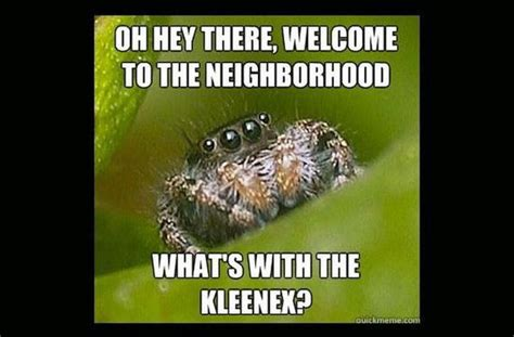 Misunderstood Spider Meme - misunderstood spider meme barnorama