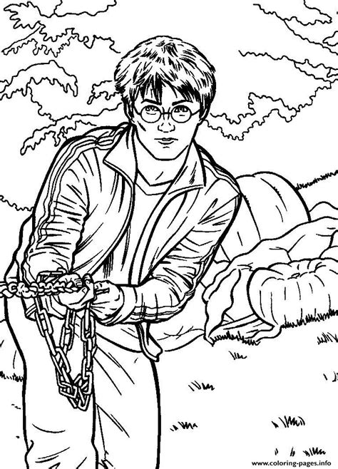 harry potter coloring book cover lego hermione granger harry potter coloring pages free