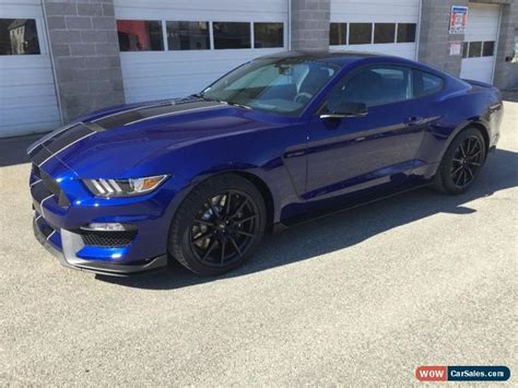 mustang 350 gt for sale 2016 ford mustang for sale in united states