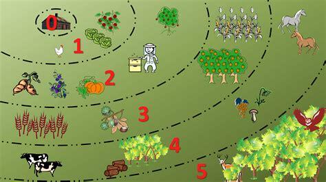 Urban Garden Design Ideas - permaculture garden greenmylife anyone can garden