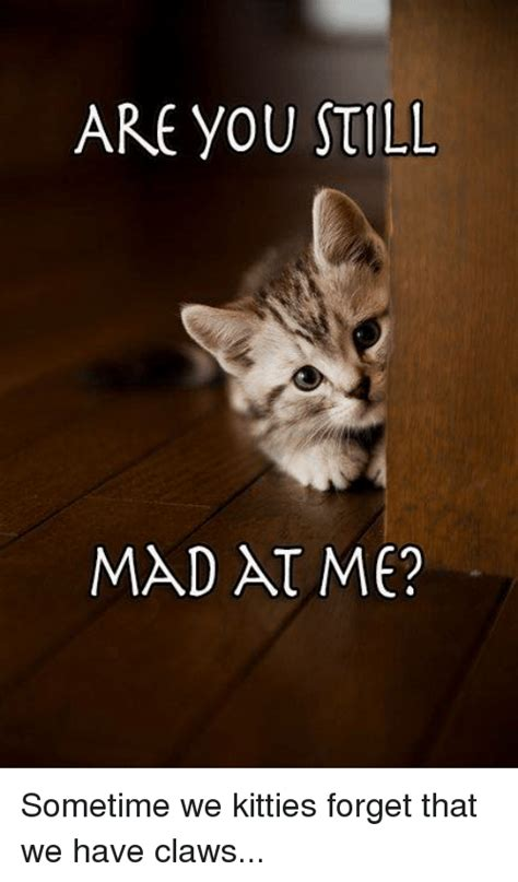 You Still Mad Meme - you still mad meme www pixshark com images galleries