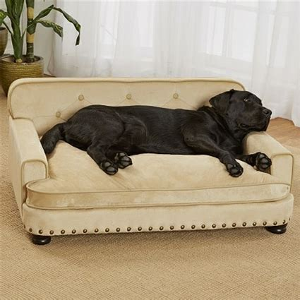 sofas for large dogs luxury large sofa bed micro velvet