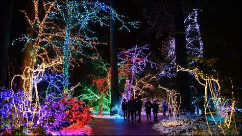 oregon garden lights the national sanctuary of our sorrowful the grotto