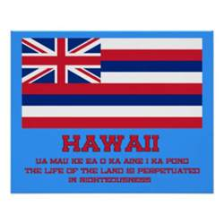 hawaii state colors hawaii state flag posters zazzle