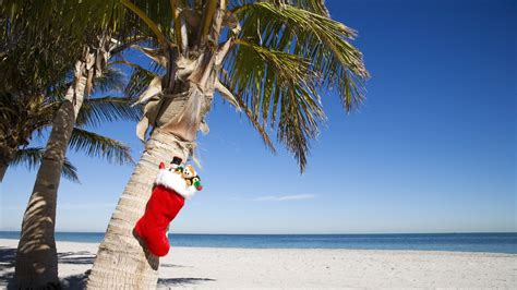 download tropical christmas wallpaper 1920x1080