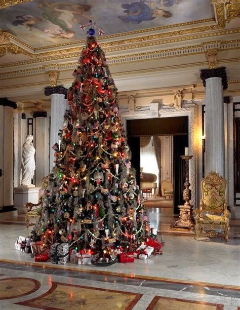 morrison xmas trees 1000 images about trees on