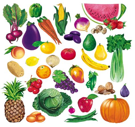 printable fruit and vegetable shapes 4 best images of printable vegetable cut outs fruit and