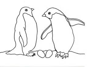 what color are penguins caroline arnold and books penguin coloring page