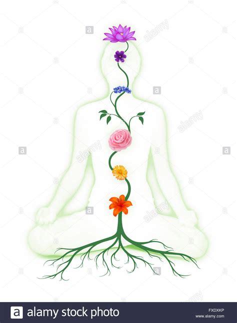 lotus flower chakra sitting in lotus pose with seven chakra symbols