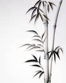 Black Shower Curtain With White Flower 25 Best Ideas About Bamboo Drawing On Pinterest Chinese
