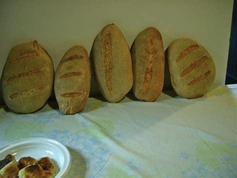 pane di casa siciliano ricetta pane fatto in casa siciliano idea di casa