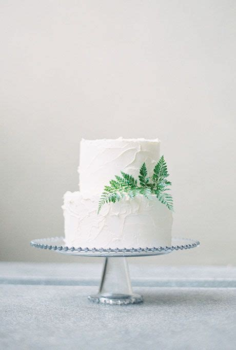 Simple Wedding Cake Decorations by Simple White Cake With Fern Decoration A Two Tiered White