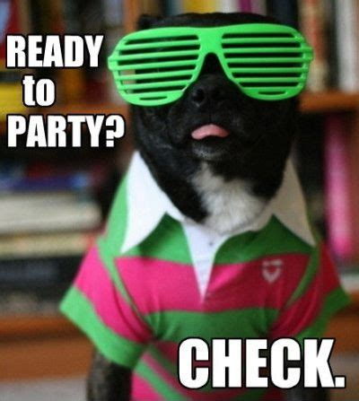 Party Meme - get ready to party meme image memes at relatably com