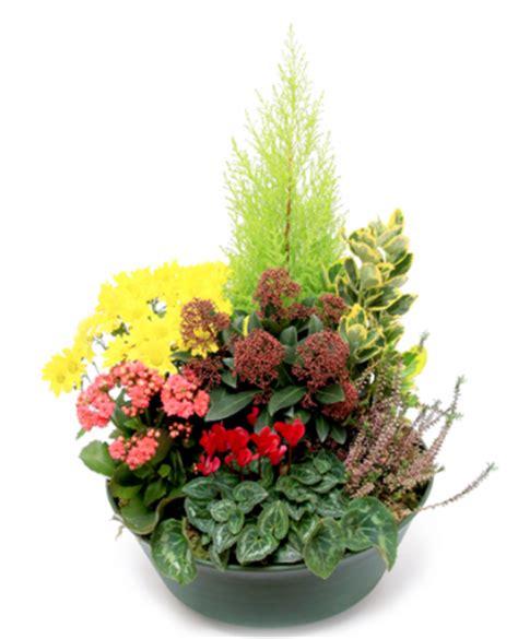 livraison fleurs deuil coupe de plantes pour cimeti 232 re