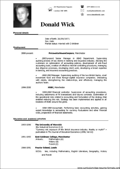 Resume Format Doc With Photo Professional Resume Template Doc Free Sles Exles