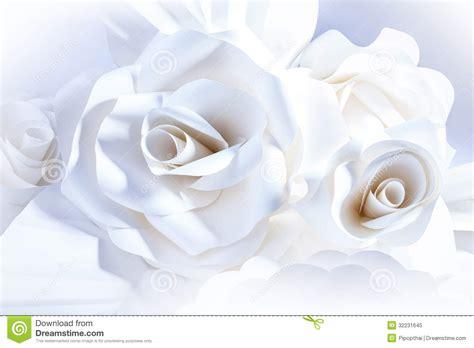 rosas blancas hermosas en el fondo blanco