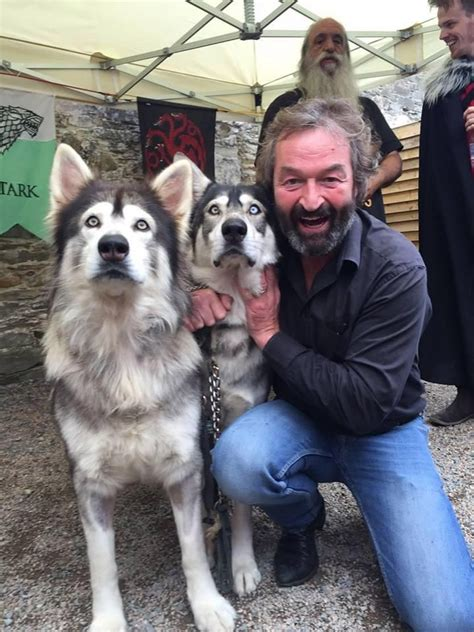 actor dog game of thrones odin and thor with game of thrones actor ian beattie