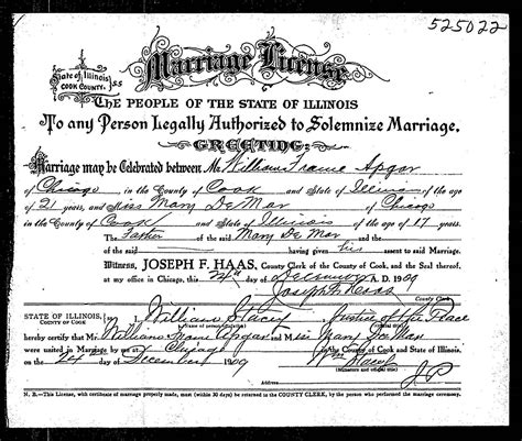 Record Of Marriage In Illinois Cook County Records