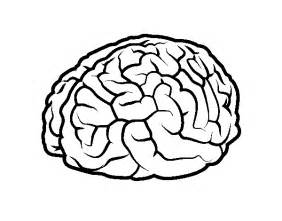 free coloring pages of the brain