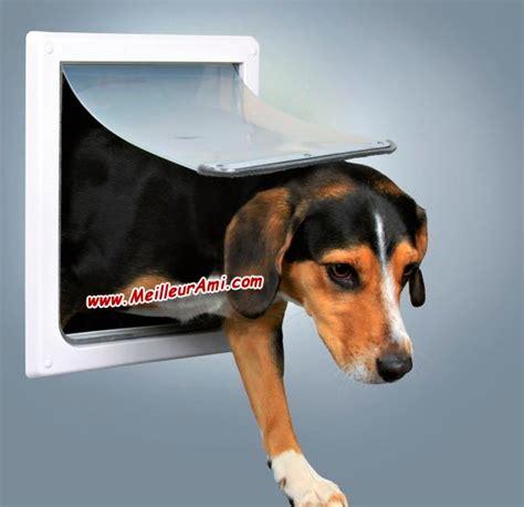 porte automatique pour chien trappe chien automatique porte automatique odomestic