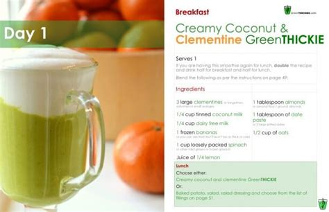 Detox Smoothie Meal Plan by Green Smoothie 7 Day Detox Diet Plan Lose Weight And Feel
