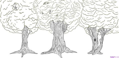how to draw a doodle tree how do i draw a tree pencil drawing