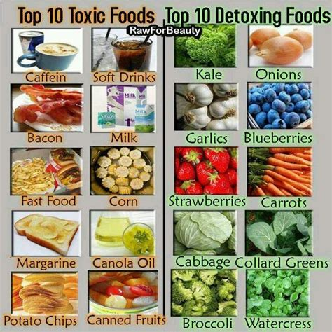 Foods That Detox The by Foods For Detox Food