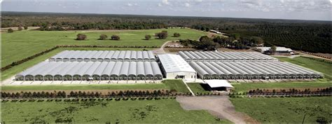 greenhouses in florida imperial builders supply inc florida greenhouse