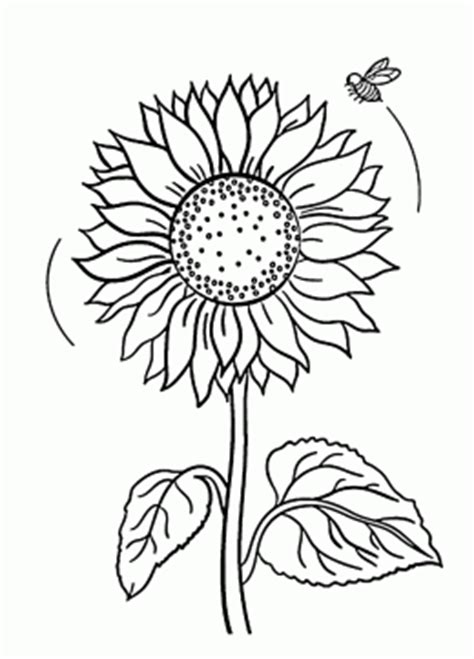 gogh coloring book grayscale coloring for relaxation coloring book therapy creative grayscale coloring books sunflower coloring pages coloring pages of sunflowers
