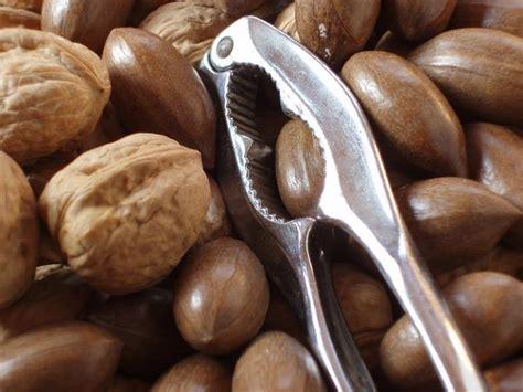 commercial nut cracker