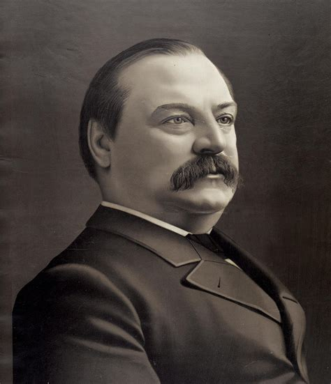 grover cleveland bathtub president grover cleveland photograph by international images