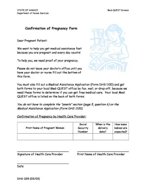 How To Make Pregnancy Papers - pregnancy paperwork frompdffillercom fill