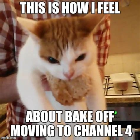 Moving Pictures Meme - this is how i feel about bake off moving to channel 4