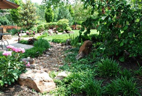 dry creek bed landscaping ideas drought tolerant plant ideas for your homestead