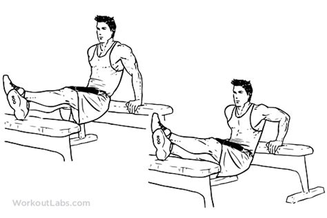 dips between benches weighted bench dip illustrated exercise guide workoutlabs