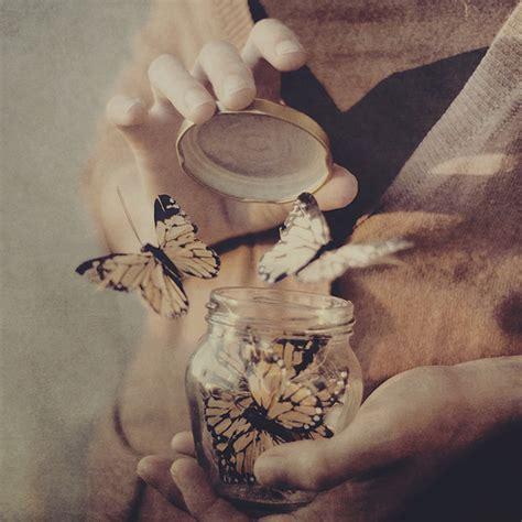imagenes mariposas saliendo de un frasco estremecedor mariposas en marcha del dia de la memoria