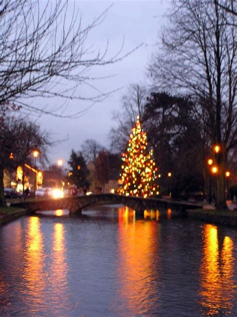 quot river christmas tree in bourton on the water