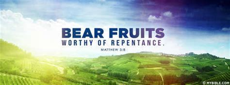 7 fruits of repentance matthew 3 8 nkjv the fruit of repentance