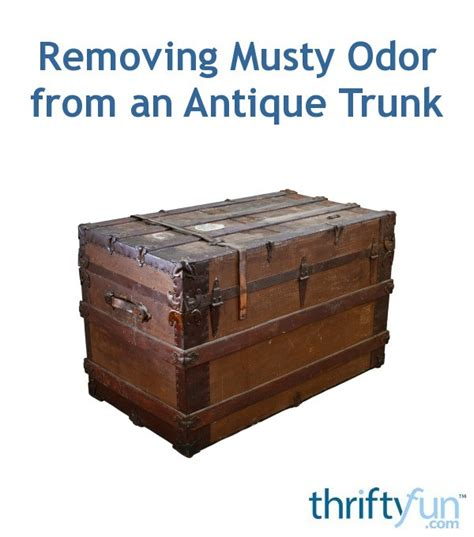 removing musty odor from an antique trunk thriftyfun